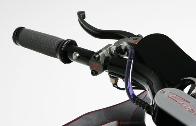 serpent custom motorcycle_24