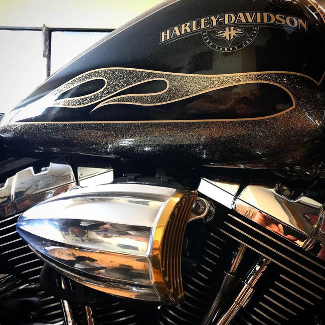 juicer aircleaner cover for harleys